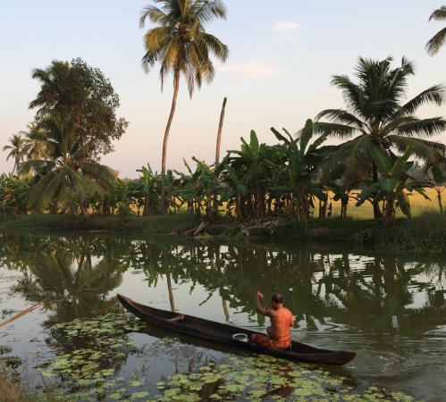 GK's Riverview Homestay: Views from my evening walk