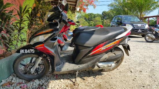 Rainbow Lodge: Scooter for rent