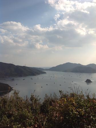 Yomomi Bridge Observatory: 晴れていれば素晴らしい眺めです