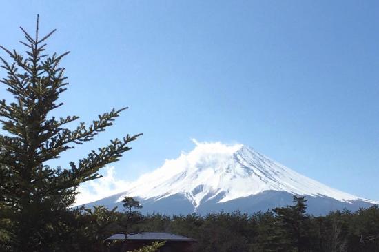 Japan Gray Line - Day Tours: Mt. Fuji (Feb 2015)