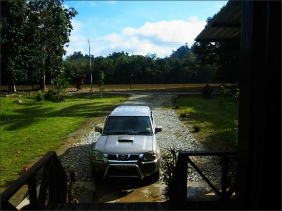 Sukau Evergreen Lodge: view from hostel entrance