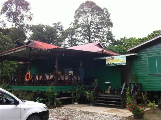 Sukau Evergreen Lodge : hostel entrance