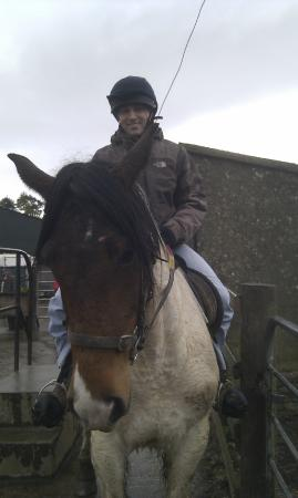 Mount Pleasant Pony Trekking and Horse Riding Centre