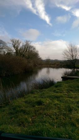 St. Tinney Farm Holidays : Peaceful view of one of the Lakes