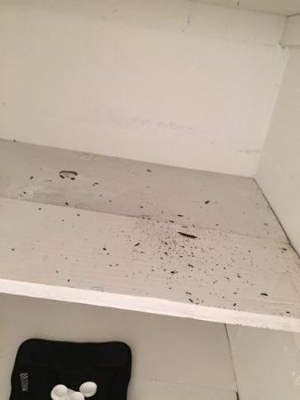 Gulf Side Motel: Filthy bathroom shelf