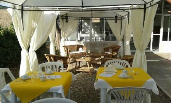 B&B Golf Club San Pablo : Angolo colazione tra l'ulivo