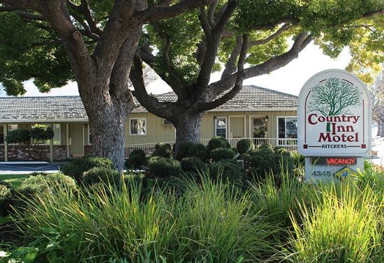Country Inn: Motel Grounds