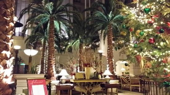 The winter garden restaurant picture of the winter - Best restaurants in winter garden ...
