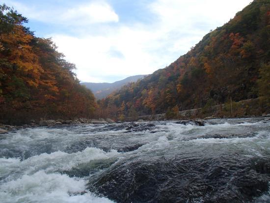 Nolichucky Gorge Campground: River