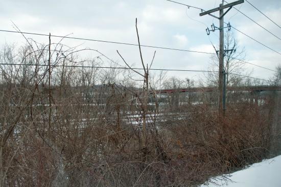 فيرفيلد باي ماريوت كولينز زانسفيل: View of train tracks from Room 121