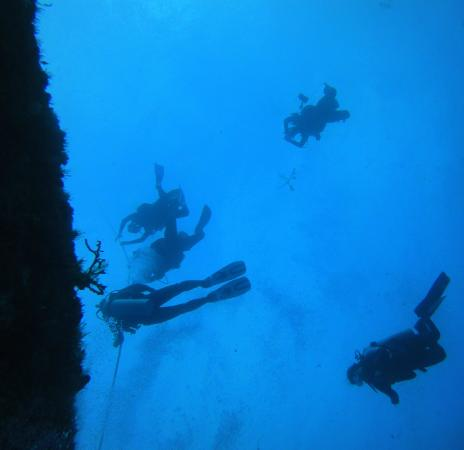 Buceo Xtabay: Azul profundo