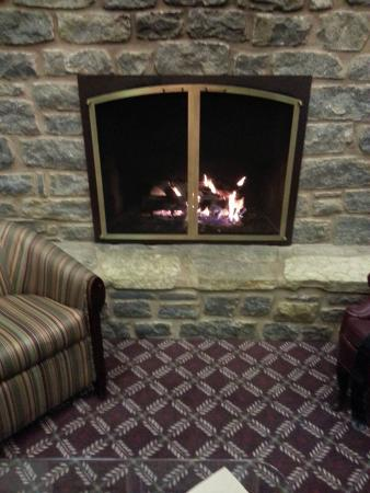 Howard Johnson Inn Lexington: Fireplace is Great for sitting and talking