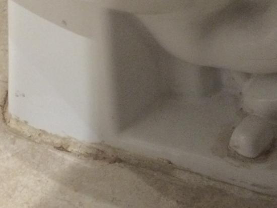 Inter-Continental Presidente Ixtapa : Room 2319 Toilet