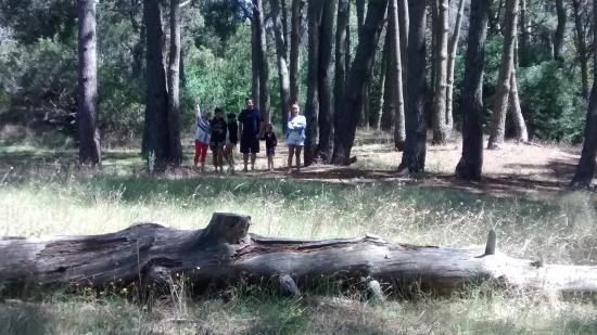 Foto de parque municipal vivero cosme argerich san for Vivero municipal