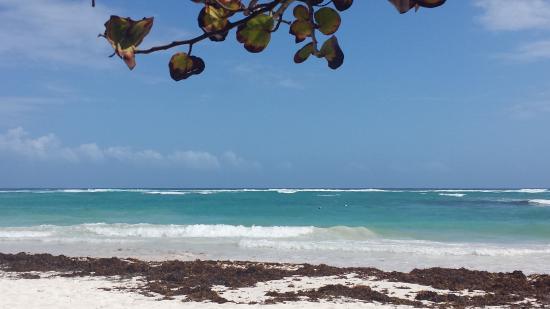 La Playa Xpuha