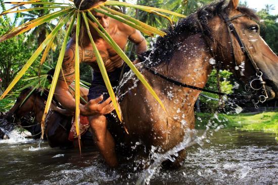 Polinesia Francesa: Discover River Hiva Oa by horseback