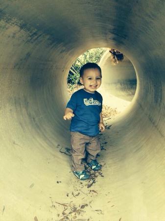 Alta Vista Botanical Gardens: Tunnels