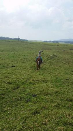 Dahana Ranch: Beautiful scenery