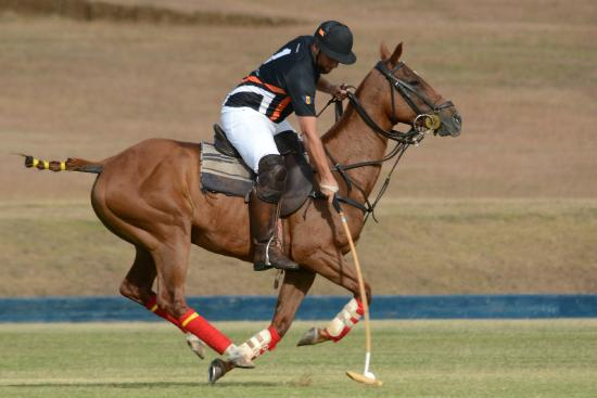 "Apes Hill Polo Club: Polo at Apes Hill ""Perfection is a Habit, not an Act"""