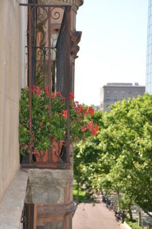 H Cristina Hotel: Sacada
