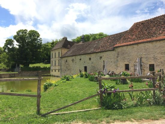 Burgundy on a Plate : Truffle hunt and truffle lunch