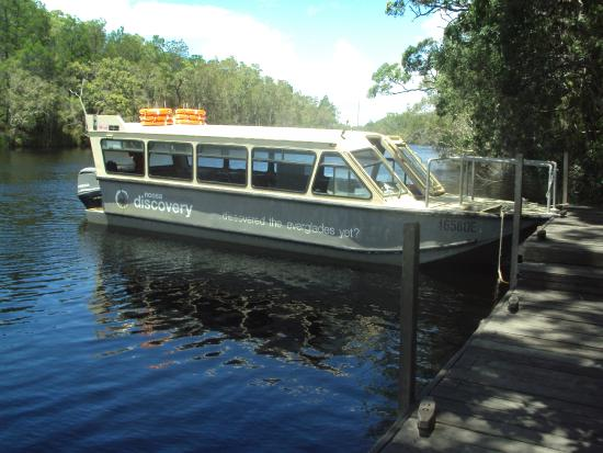 The Discovery Group: Discovery- The boat we spent the day on for the Everglades Tour