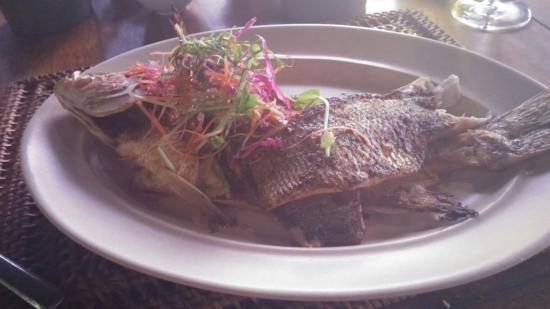 Jala Restaurant : The best fish ever