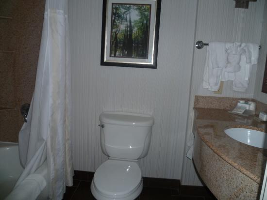 Hilton Garden Inn Lafayette/Cajundome: Salle de bain
