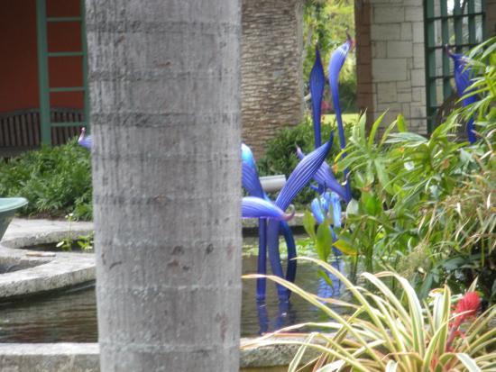 Fairchild Gardens - Picture of Fairchild Tropical Botanic Garden ...