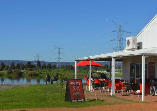 Yahava KoffeeWorks: It's a beautiful setting in vineyard country.