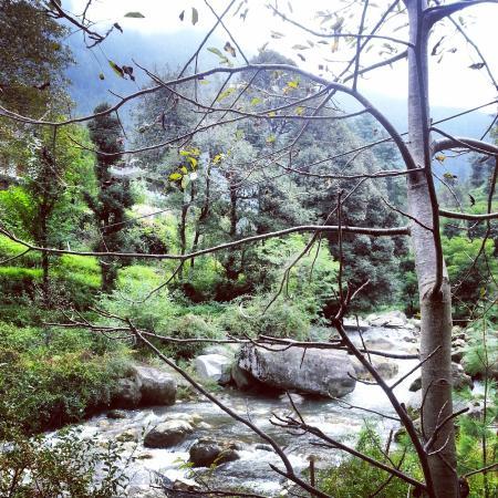 Banjar, Inde : JIBHI