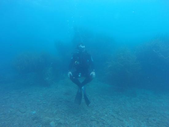 Titan Dive Center: advance