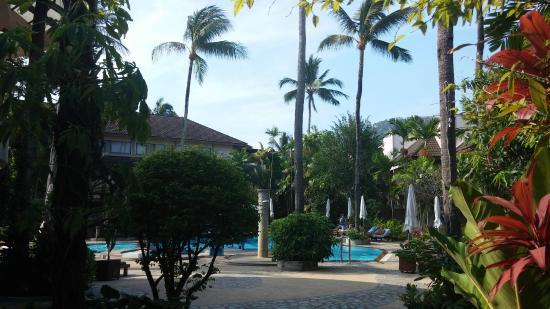 Coconut Village Resort : небольшой бассейн