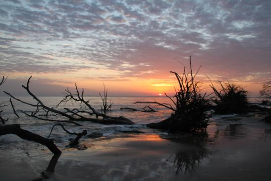 Big Talbot Island State Park: Dawn at  Big Talbot