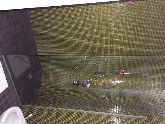 Hotel Walliserhof im Brandnertal: Shower with 6 heads...