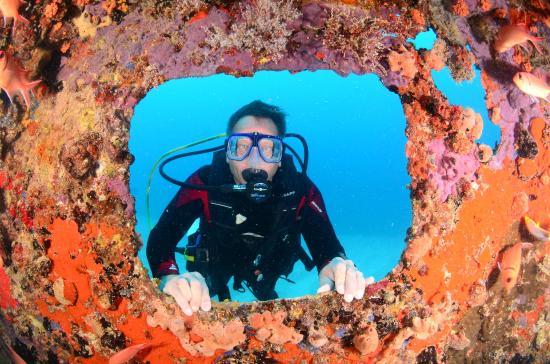 Κόλπος Simpson (Λιμνοθάλασσα), Άγιος Μαρτίνος: Diving off Simpson Bay St Maarten