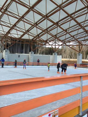 Fujisan Juku no Mori: Pista de patinação