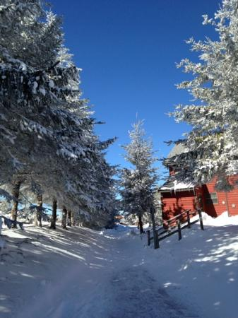 Snowshoe Mountain Resort: The walk from Soaring Eagle to the grocery store