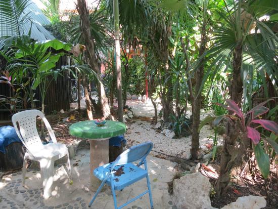 Rancho Tranquilo : garden space
