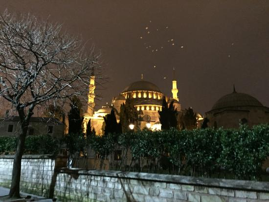 Istanbul, Turkey: At night with birds around the roof..