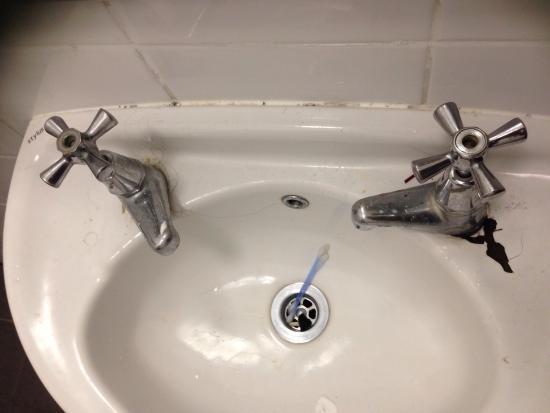 Globe Backpackers & City Oasis Resort: Pour les âmes sensibles, j'ai préféré retiré le cafard mort dans le lavabo