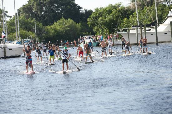 Flying Fish Paddle Sports: We even rent race boards
