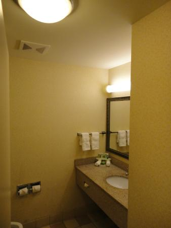 Holiday Inn Express New Orleans East: Bathroom