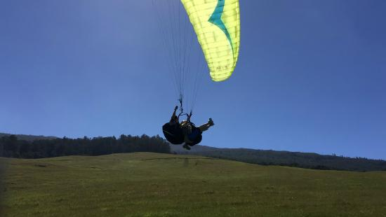 Proflyght Paragliding: Getting ready to land