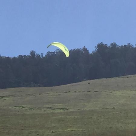 Proflyght Paragliding: Flying over the hillside