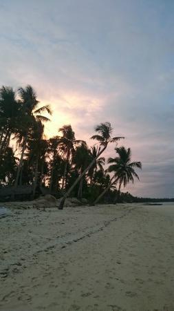 Romantic Beach Villas: Stranden