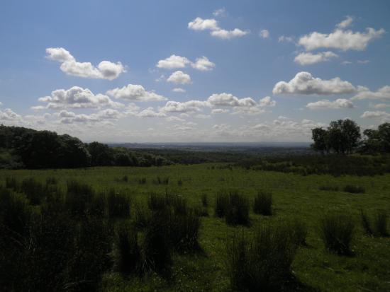 Mugdock Country Park: View