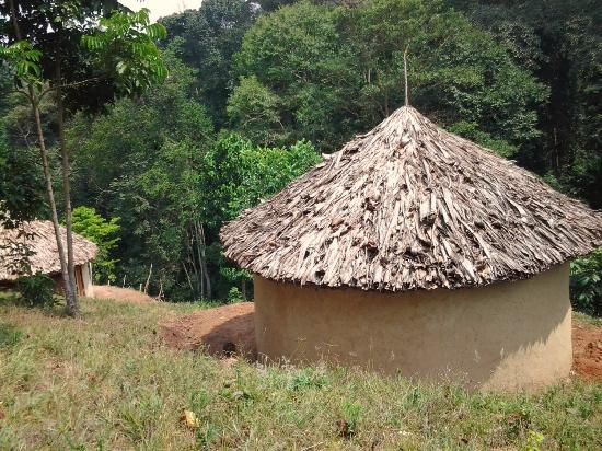 Bwindi Forest Farm Camp Site