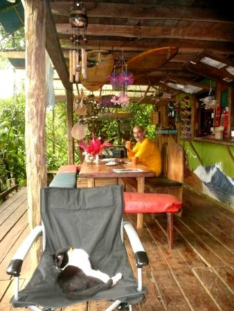 Up in the Hill - Coffee Shop & Organic Farm : relax
