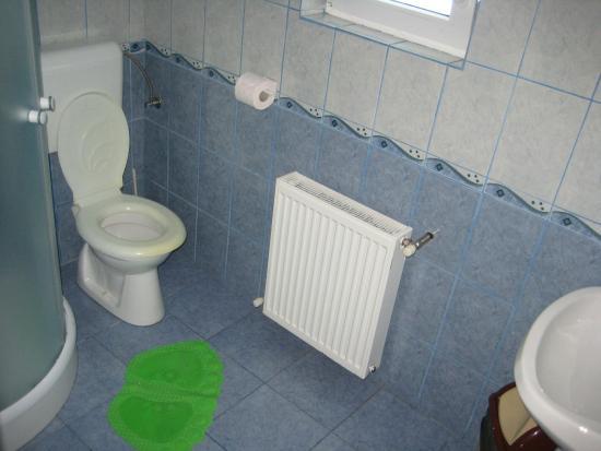 Bathroom - Picture of Casa Ardeleana, Sambata de Sus - Tripadvisor
